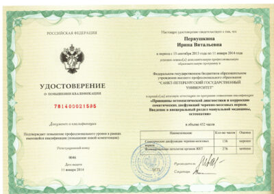 Удостоверение 5