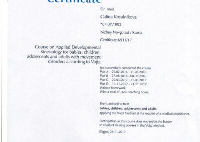 Certificate Vojta (1)