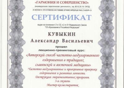 07_Сертификат-целитель-(2)
